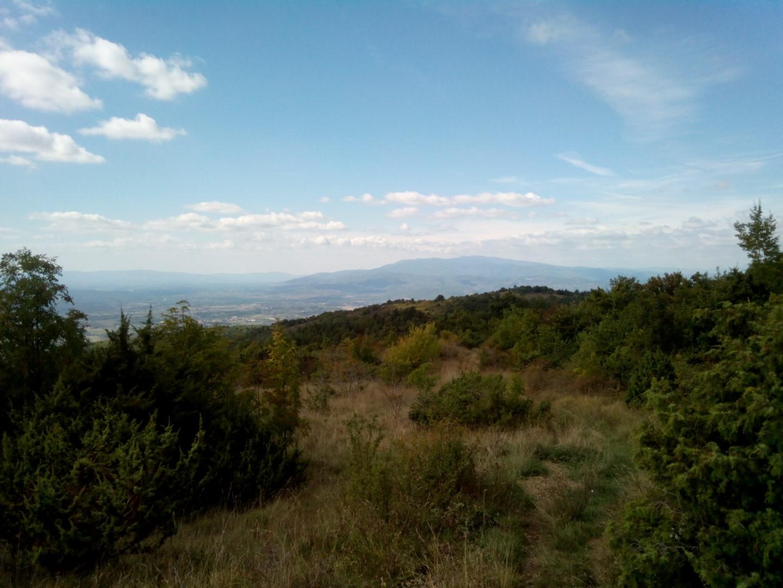 Arezzo:foto panoramica vista da poti