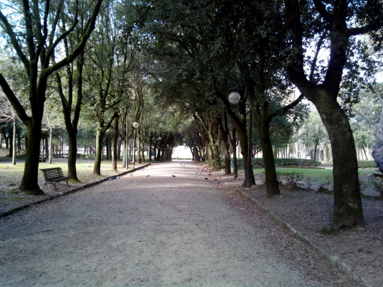 Passeggiata in centro ad Arezzo:Foto del viale del parco Il Prato di Arezzo visto dalla zona della Fortezza
