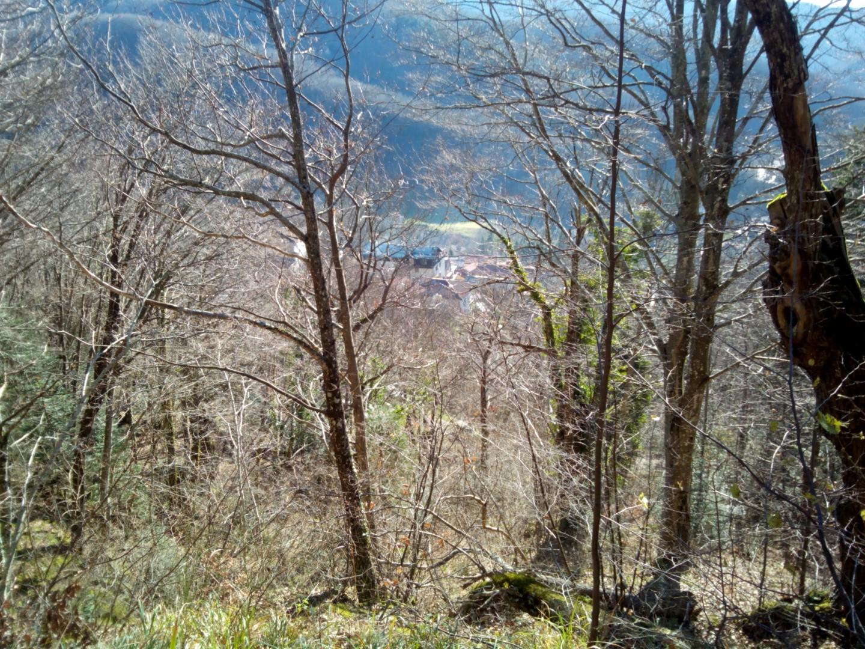 Badia Prataglia - Vista panoramica dal bosco