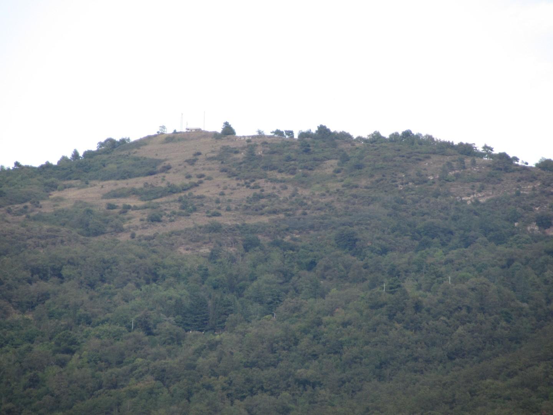 Cima del monte lignano