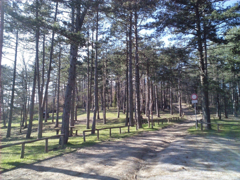 Sentiero-Cinque vie di LIGNANO