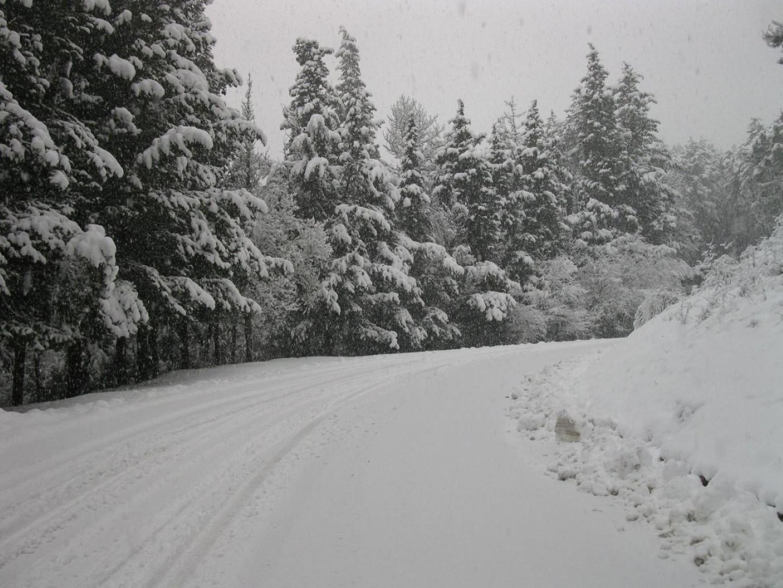 Strada per poti innevata