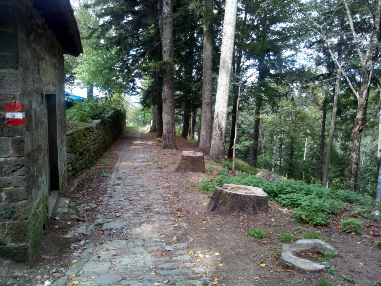 strada in pietra che dal paradisino porta a vallombrosa