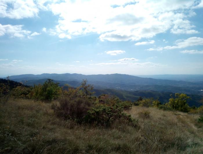 Lignano -Foto panoramica da Poti