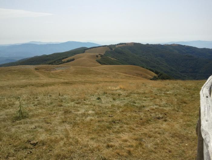 Escursione alla croce del pratomagno: il crinale