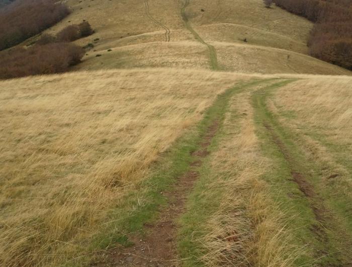 Il sentiero 00 in Pratomagno