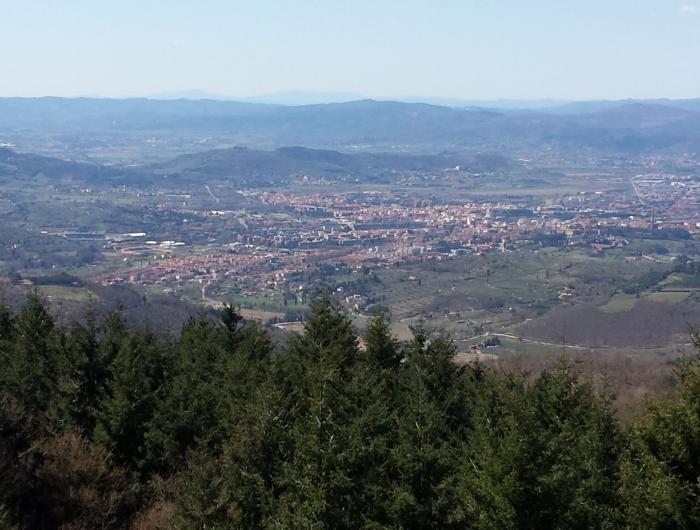 Arezzo vista da Poti