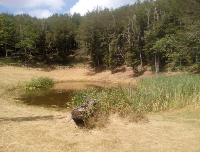 Lago degli idoli sulle pendici del Monte Falterona