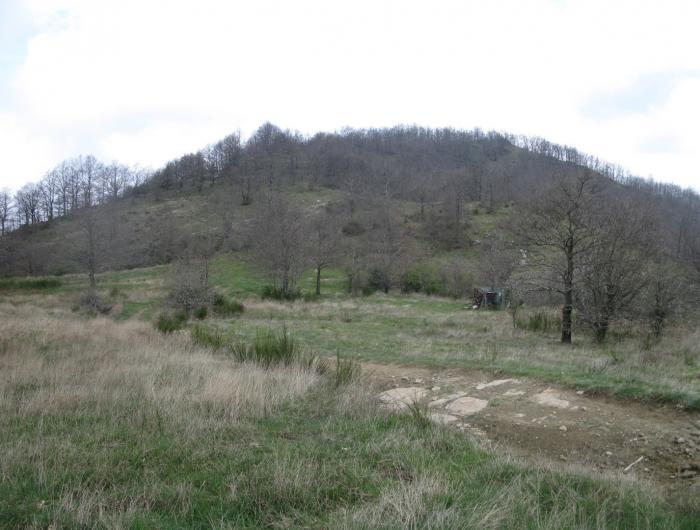 Immagine del Monte Favalto