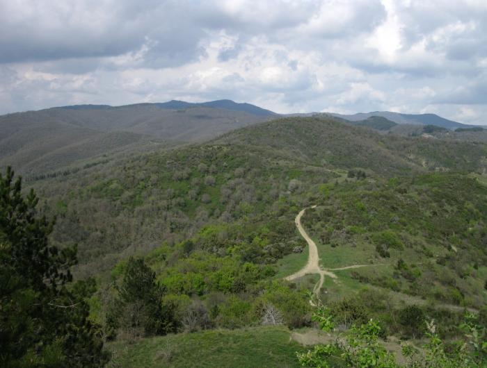 Foto panoramica da Rocca Montanina