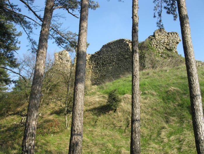 Rocca Montanina: i ruderi della rocca