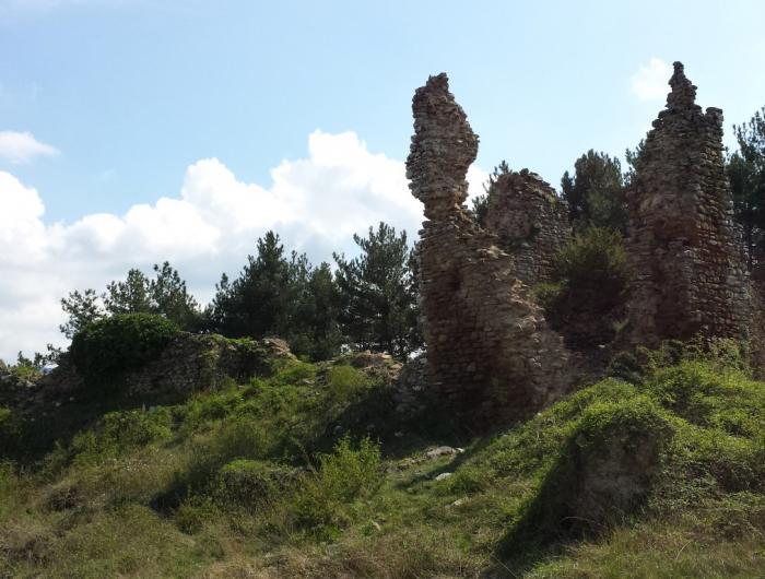 Immagine della rocca montanina