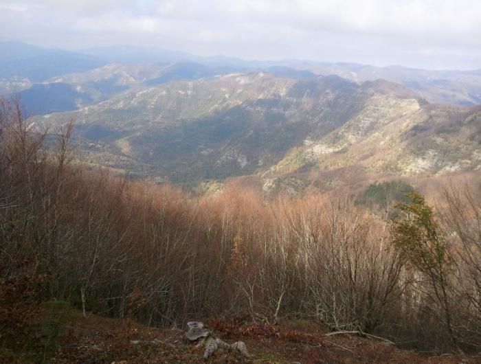 Panorama dal Crinale del Falco-Falterona