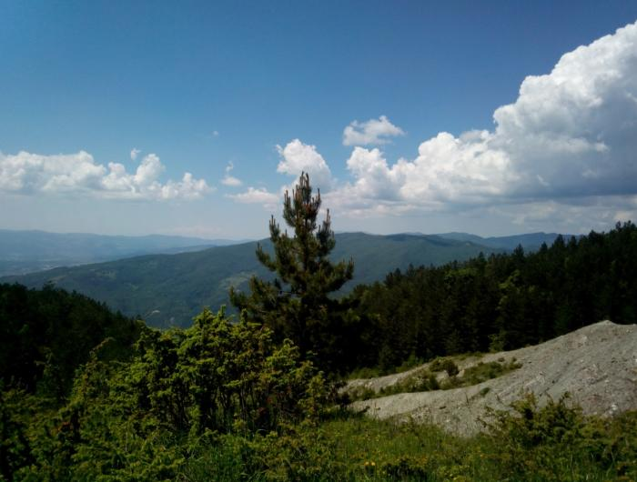 Foto Panoramica verso Rimbocchi -La Verna