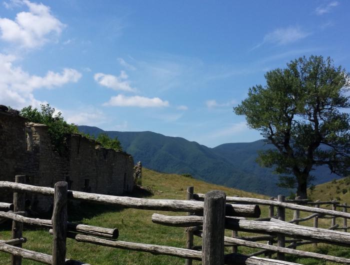 Prati con staccionata di San Paolo in Alpe - San Paolo in Alpe, Casentino
