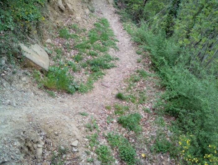 lungo il sentiero 47 c'è una frana facilmente aggirabile a piedi