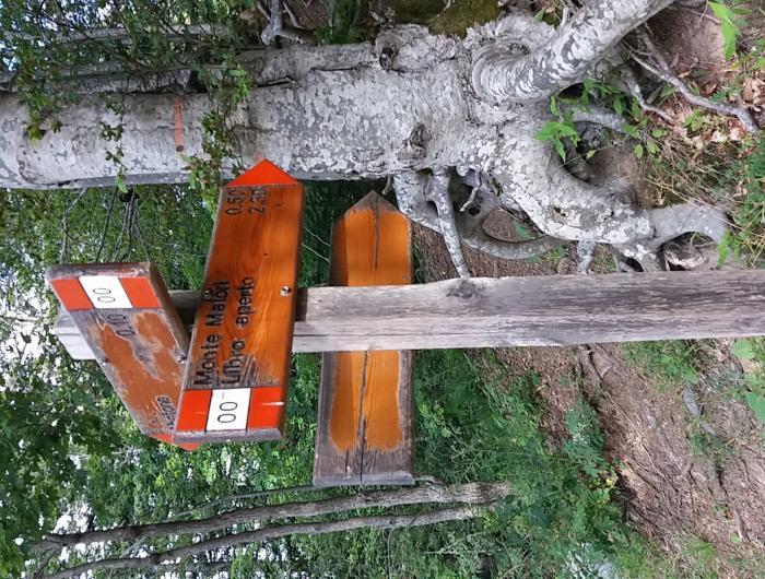 Segnalazione verso libro aperto Sul Monte Cimone