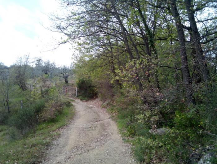 Il sentiero 47