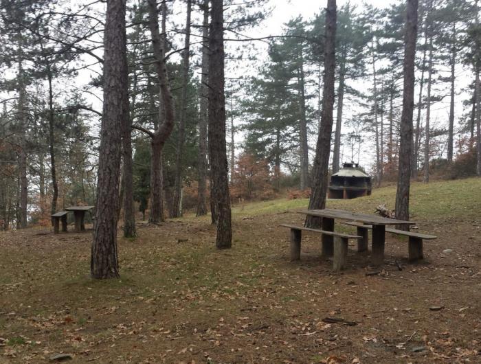 Tavolini per pic nic nel Parco di Lignano