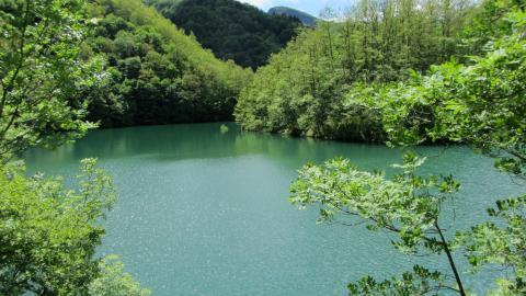 Foto Escursione Casentino del Lago di Ridracoli