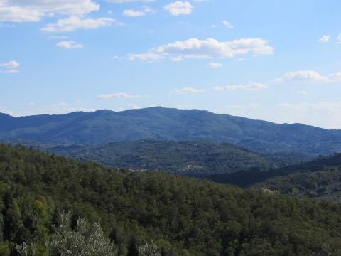 Monte Lignano
