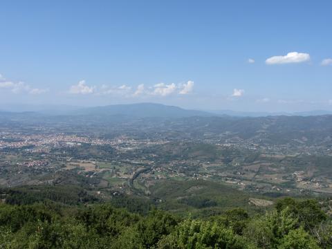 Foto Panoramica da Lignano