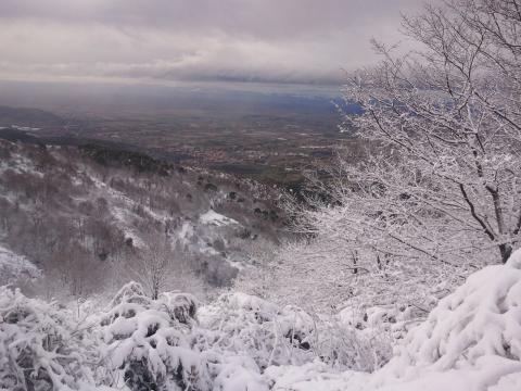 La Val di Chiana vista dall'alto