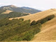 Trekking: Traversata da Monte Lori a Vallombrosa e ritorno Vecchie Vie escursioni trekking casentino Arezzo