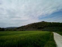 Escursione da Giovi a San Martino Vecchie Vie escursioni trekking casentino Arezzo